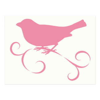 Pink Sparrow with Ribbon Postcard