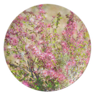 Pink Spray Plate