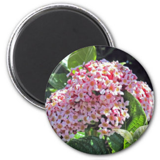 pink spring blossoms 2 inch round magnet