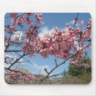 Pink Spring Blossoms Mouse Pad