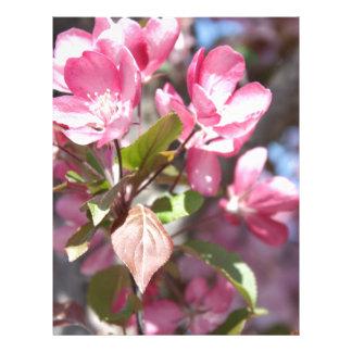 Pink Spring Flower Blossoms Letterhead
