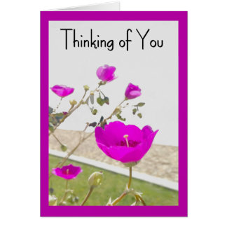 Pink Spring Flowers Thinking of You  Card - Anyone