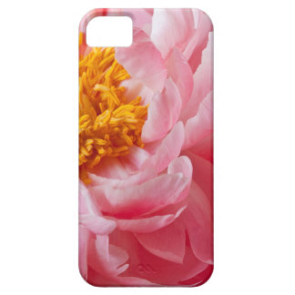Pink Spring Peony Flower - Peonies Template iPhone 5 Cases