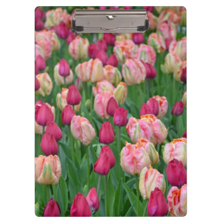 Pink spring tulips print clipboard