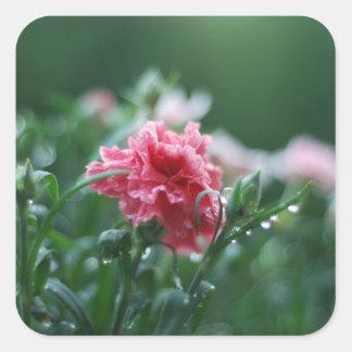 pink square sticker