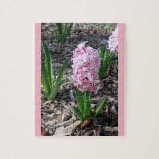 Pink Stars in Bloom Jigsaw Puzzle