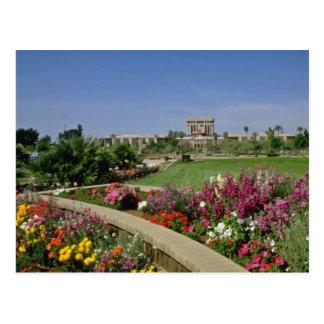 Pink State capitol, flower gardens, Phoenix, Arizo Postcard