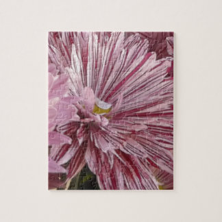 Pink striped flower jigsaw puzzle