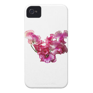 Pink Sweet Pea Heart iPhone 4 Cases