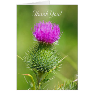 Pink thistle flower thank you greetings card
