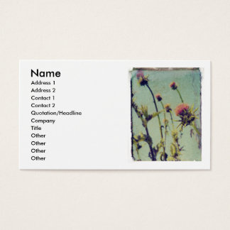 Pink Thistle profile card