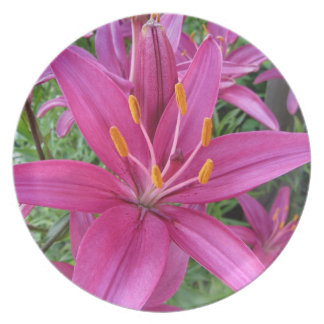 Pink Tiger Lily Plate