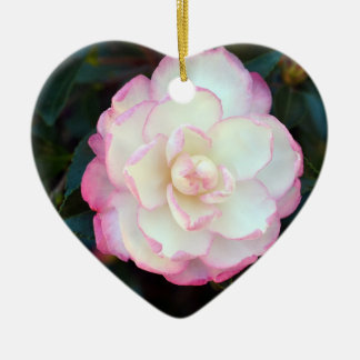 Pink Tipped Camellia-053 Ornament