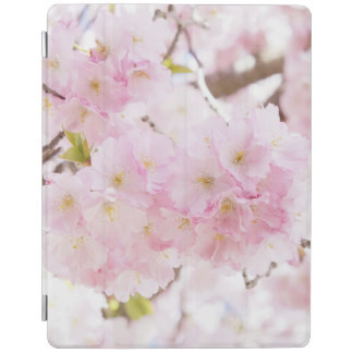 Pink Tree Cherry Flower iPad Cover