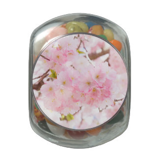 Pink Tree Sakura Cherry Blossom