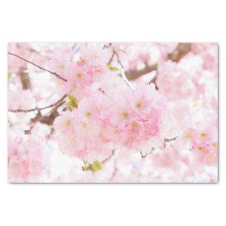 Pink Tree Sakura Cherry Blossom Tissue Paper