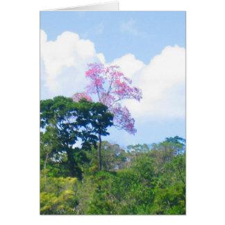 Pink Tree Venezuela Jungle Landscape Card