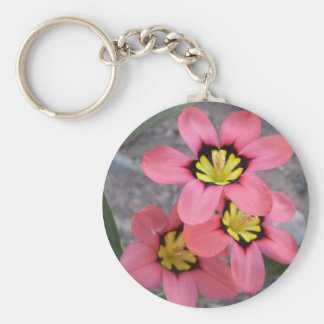 pink tricolored sparaxis flowers basic round button keychain
