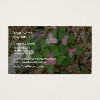 Pink Trilliums, Quebec, Canada. flowers Business Card