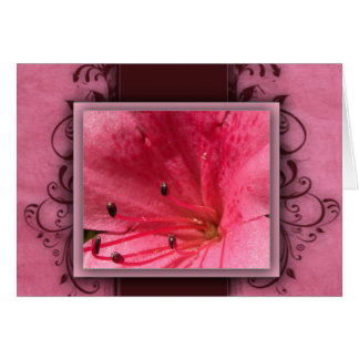 Pink tropical hibiscus flower card