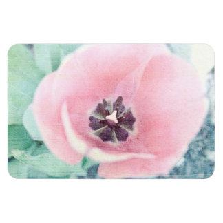 Pink Tulip Blossom Magnet