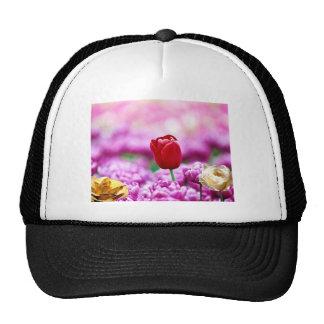 Pink Tulip Gold Rose White Rose Hats