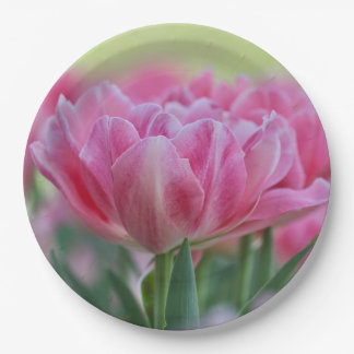Pink Tulip In Spring Paper Plate
