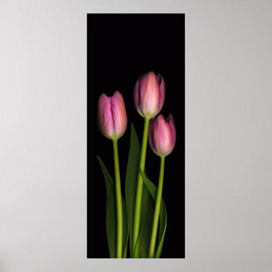 Pink Tulip Trio Print