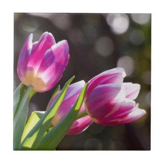Pink Tulips Bokeh Tiles