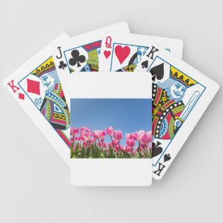Pink tulips field with blue sky bicycle playing cards