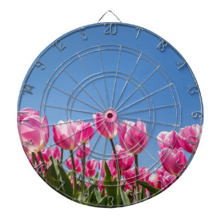 Pink tulips field with blue sky dartboards