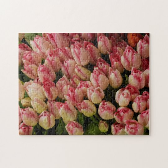 Pink Tulips Puzzle