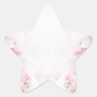 pink  vintage  old style star sticker