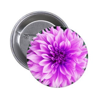 Pink violet dahlia pin