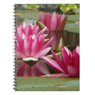Pink Water Lilies Photo Spiral Bound Notebook