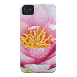 PInk water lily flower iPhone 4 Case