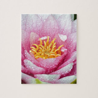 PInk water lily flower Jigsaw Puzzle