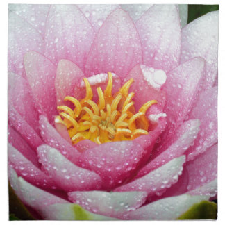 PInk water lily flower Napkin