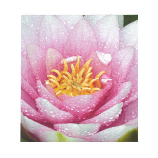 PInk water lily flower Notepad
