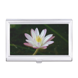 Pink water lily flower, Photo Business Card Cases