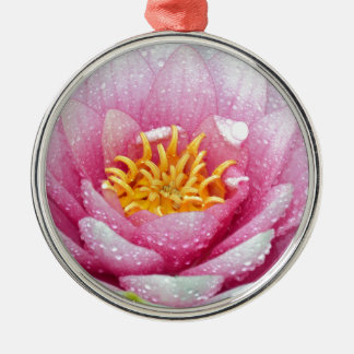 PInk water lily flower Silver-Colored Round Ornament