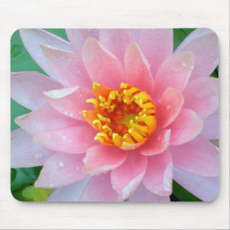 Pink Water Lily Mousepad