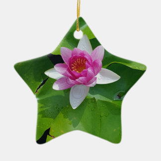Pink Water Lily On Green Pads Photography Ceramic Star Ornament