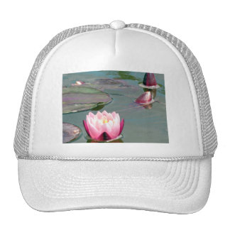 Pink water lily trucker hat