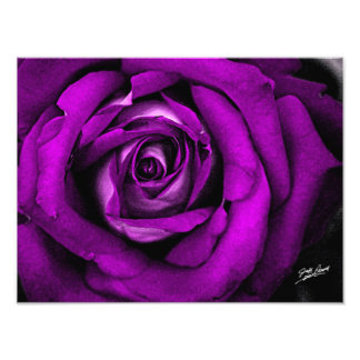 Pink Watercolor Rose Print by Jeff Pierson Photograph