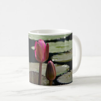 Pink Waterlilies Coffee Mug