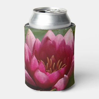 pink waterlily can cooler