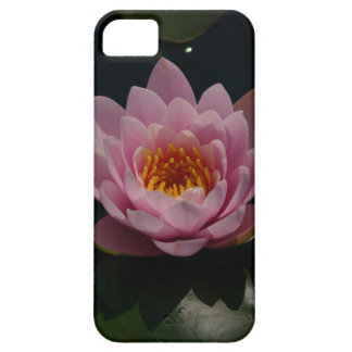 Pink Waterlily iPhone 5 Covers