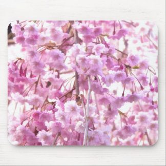Pink Weeping Willow Flowering Tree Mouse Pad