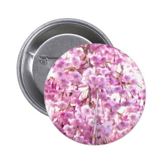 Pink Weeping Willow Flowers In Spring 2 Inch Round Button